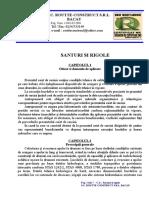 2_CAIET_DE_SARCINI-SANTURI_SI_RIGOLE.doc