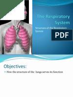 L11. Respiratory System