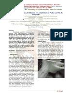 D33013017.pdf