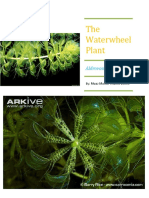 conservation and biology of Waterwheel Plant.docx