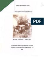Hilkner_RegianeAparecidaRossi_D.pdf