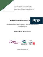 Cristiana_Gomes.pdf