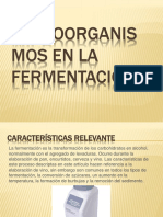 Microorganismos en La Fermentación
