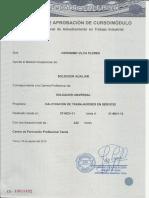 Cv Vilca Flores Geronimo0011