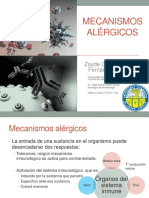 Mecanismos alérgicos