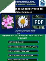 CLASES DE METABOLITOS SECUNDARIOS