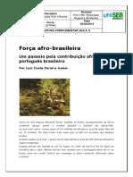 Força afro-brasileira