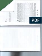 o-mito-da-desterritorializa-rogerio-haesbaert-cap-5.pdf