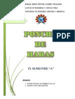 Ponche de Habas