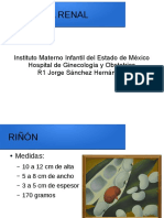 presentación anatomia renal, ureteral, vesical.odp