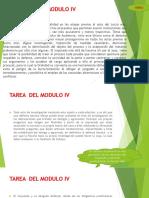PRINCIPIOS EN EL NCPP