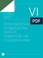 curriculo-nacional-2017_cap VI_Orientaciones_competencias (2).pdf