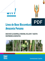 biocombustibles en la amazonia peruana.pdf