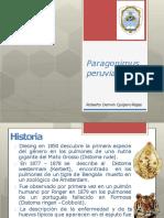 Trematodos Tm Peruvians