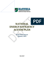NEEAP For Comments Final January 2014.pdf