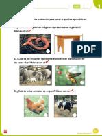 EvaluacionNaturales1U1