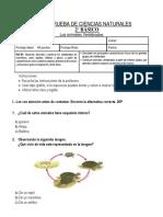PRUEBA DE CIENCIAS NATURALES2.docx