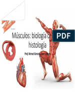 Tema 6 Musculos Biol Celular e Histologia