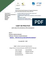 BUC_15_CAIET DE PRACTICA - XI TIA_Dedu Niculina.pdf