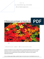 5 Flores Para Proteger Su Huerto de Las Plagas - Worms Argentina