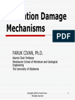 Formation Damage .pdf