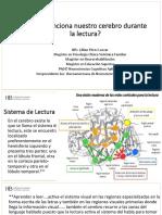 Cerebro y Lectura (1)