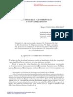 Los Derechos Fundamentales Interpretación Carbonell