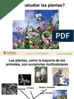 TTPB1WHYSTUDYPLANTS_SpanishVersion
