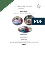 6.- Modelo de Informe de La Organizacion