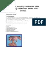 TBC, BRUCELOSIS Prevención