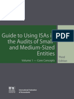 ISA Audit Guide 2010-01