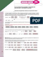 articles-26297_recurso_pauta_pdf.pdf