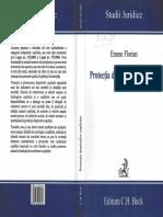 111807565-Protecţia-drepturilor-copilului-E-Florian-2006.pdf