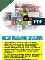 1 NIVELES DE ORGANIZACION.ppt