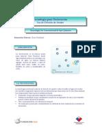 Tecnologia_para_Decloracion_Conama.pdf