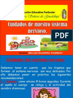 Cuidadosdelsistemanervioso 150615042626 Lva1 App6891