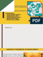 Centro Quirurgico _adhesivos