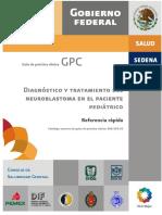 GRR_SSA_303_10.pdf