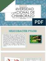 Helicobacter (2)