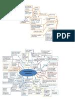1.5 Quimioterápicos y antibióticos (mapa)-2.docx