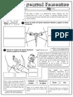 Aparato-sexual-femenino-y-maculino.pdf