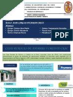 Grupo 3-Cajas Rurales de Ahorro y Credito