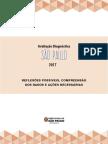Avaliacao Diagnostica Reflexoes_2017_documento Final