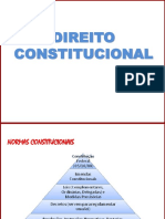 Direito Constitucional NOVO