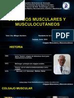 Colgajos Musculares Diogenes Briceño- CRG Plastica Hospital Dr. Domingo Luciani