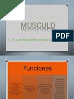 Generalidades del tejido muscular.pptx
