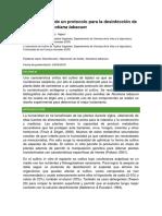 Determinación de Un Protocolo Para La Desinfección de Semillas de Nicotiana Tabacum
