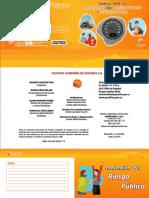 Cartilla Prevencion Del Riesgo Publico y Seguridad Vial