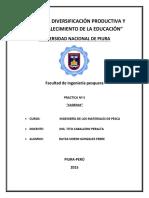 5to_informe_de_IDM.docx