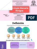 Patología Mamaria Benigna